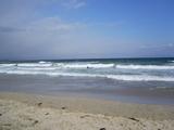 白浜のサーファー
