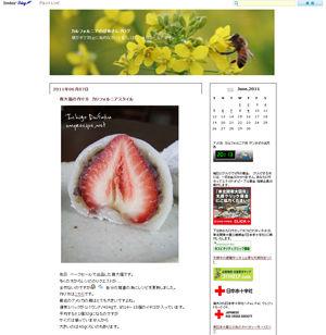 大人気シニアブログ!『カルフォルニアのばあさんブログ』