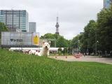 札幌大通り公園で......散歩。