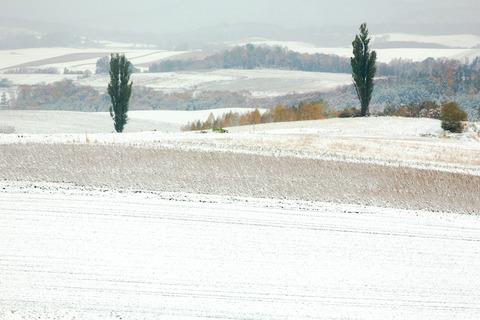 初雪 マイルドセブンの丘奥