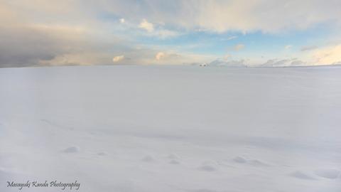 やさしの雪丘s