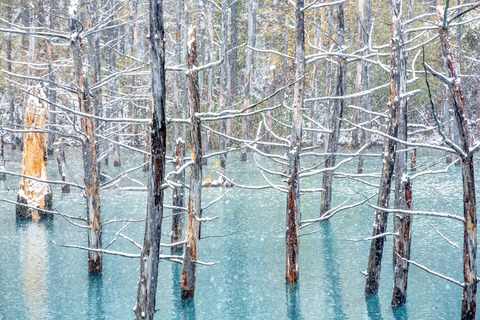 雪舞の池2