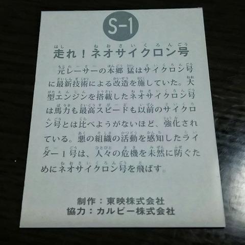 DSC_0494-01