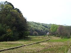 P4120072shichi