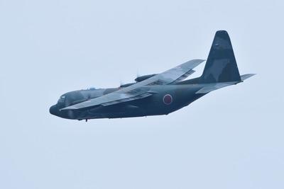 FJ5A9459b
