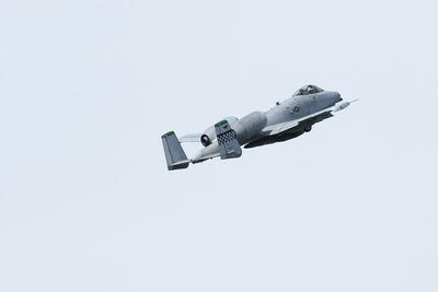 FJ5A7319b2