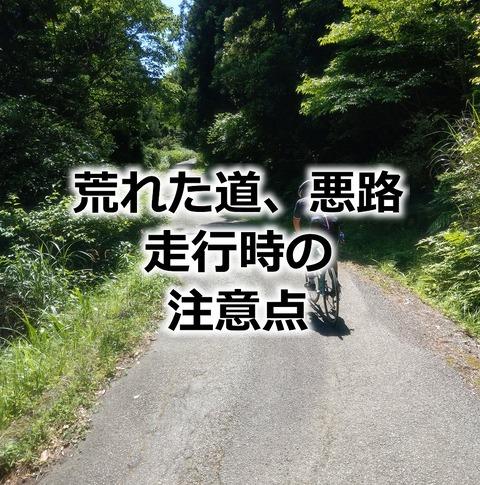 image11591