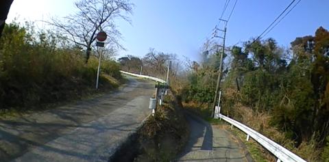 image4308