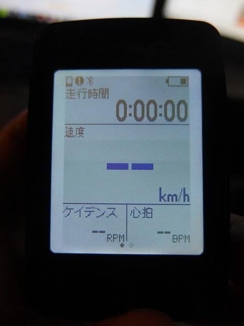 P6134103