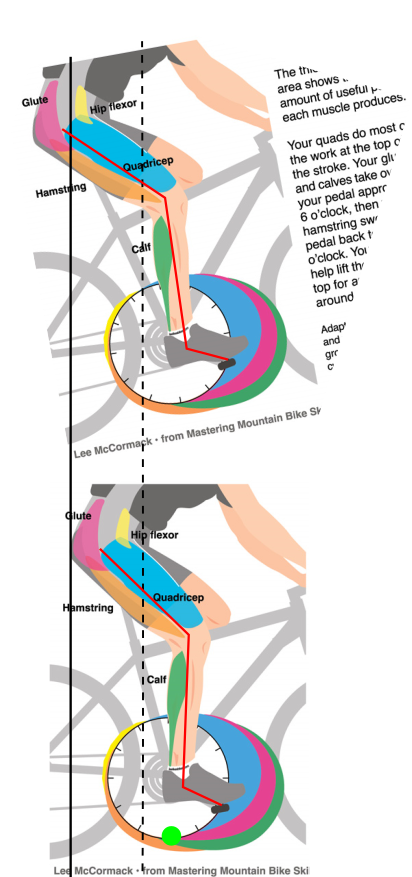 image4950-2