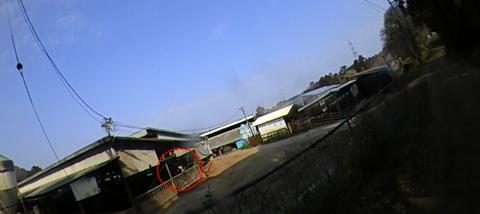 image4353