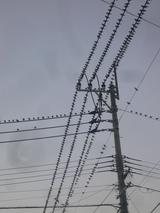 P1080746