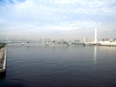081007豊洲大橋