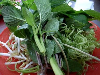 060623nhulan野菜.jpg