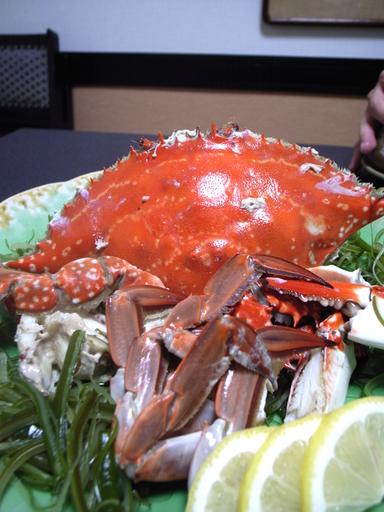081020岩手川渡り蟹