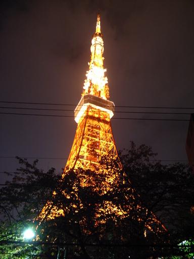 081115タワシタ東京タワー