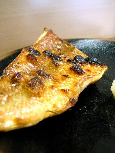 080422魚竹アコウ鯛
