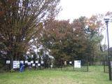 森の展覧会6