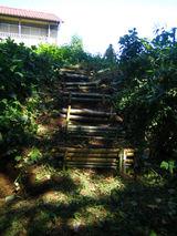 階段づくり2