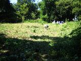 秋の草刈り06-4