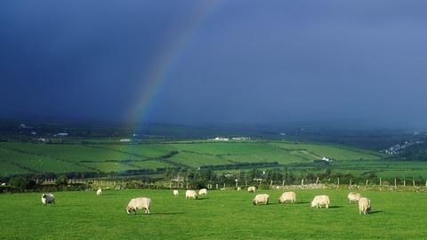 アイルランドと沖縄って似てるらしいよ