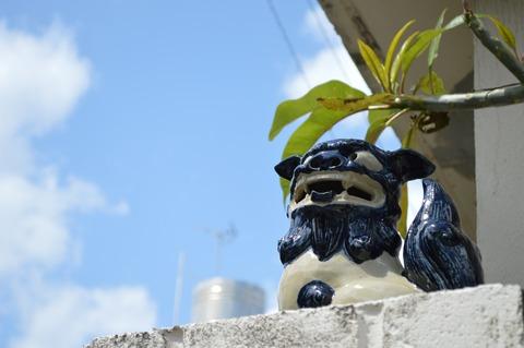 ぼくは地元(沖縄)で何ができるのだろうか?