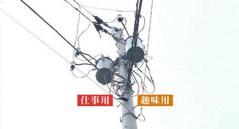 【マジキチ】 タモリ倶楽部で紹介されたオーディオマニアがヤバい マイ電柱ってなんだよ (画像あり)