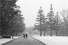 【悲報】関東で大雪。18日のおよそ2倍