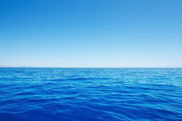 なんで昆虫って海に居ないの?