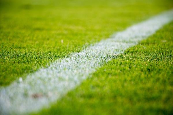 grass-2616911_1280