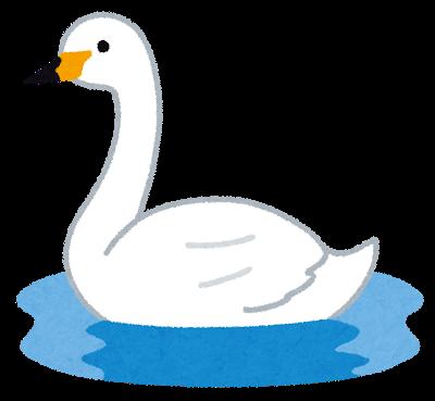 bird_hakuchou