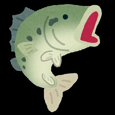 fish_blackbass2
