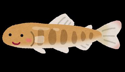 fish_sake_chigyo