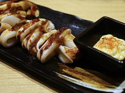 squid-471807_640