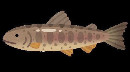 川魚最強は鮎という風潮