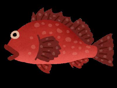 fish_kasago (1)