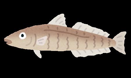 fish_kisu2
