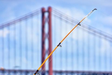 釣りに詳しい人来てください!!!