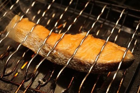 salmon-1759530_640