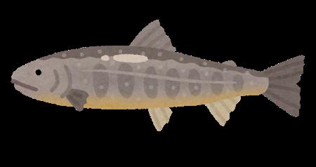 【画像】渓流の魚釣りたい