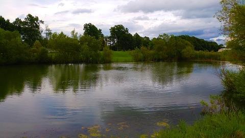 pond-1618863_640