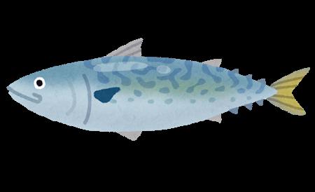 fish_saba2