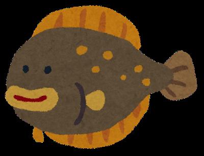 fish_hirame