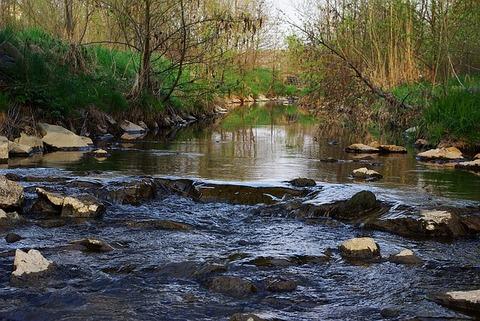 river-1358993_640