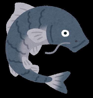 fish_koi_black