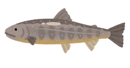 fish_iwana