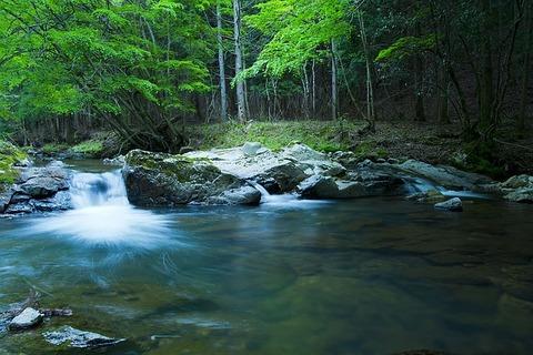 river-1167456_640