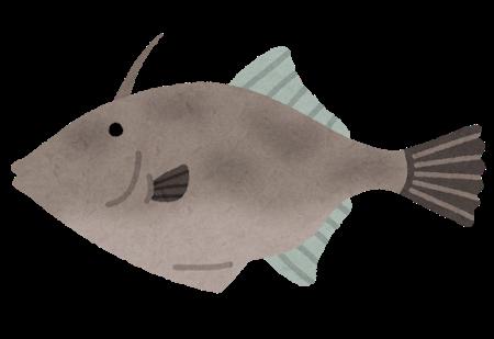 fish_umadura_hagi