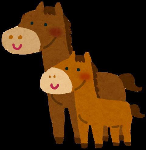 """【悲報】「島根」年間7000馬、引退した『競走馬』は9割殺処分の現実…元競走馬を積極的に受け入れる牧場には""""ディープインパクトの子供""""もいた"""