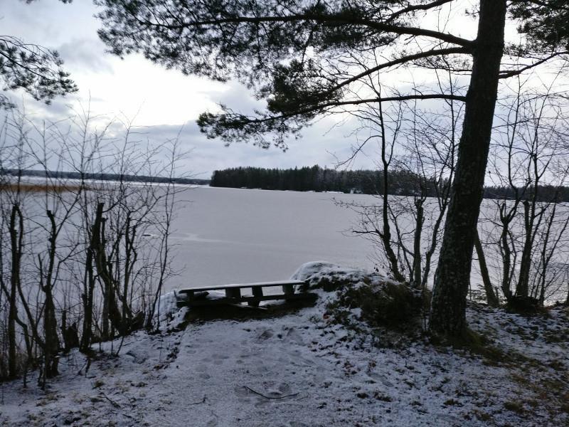 cottage_winterswim_800px